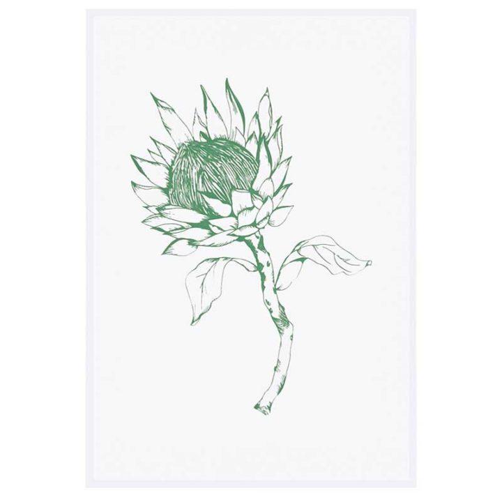 Protea-Green