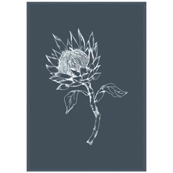 Grey King Protea Tea Towel
